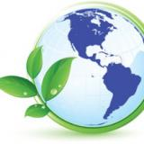Environmental Solution, Inc.